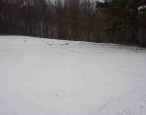 Knowing if the ground is likely to be snow covered can be important when selecting boots.