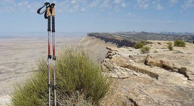 Trekking Poles: The Good, The Bad, And The Ugly