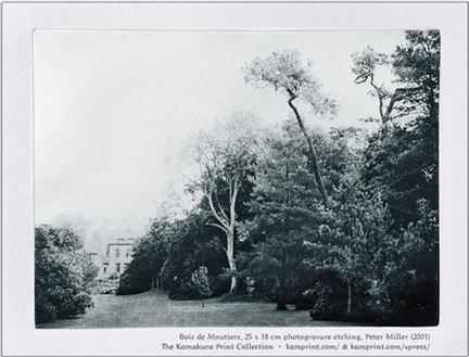 Bois de Moutiers, photogravure etching by Peter Miller, of the Jekyll landscape garden and Luytens house