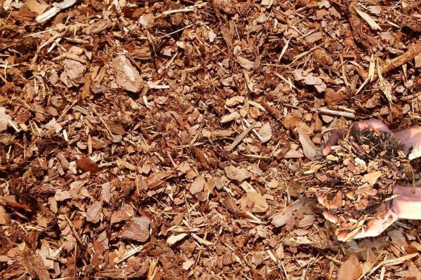 kamps mulch delivery cedar black