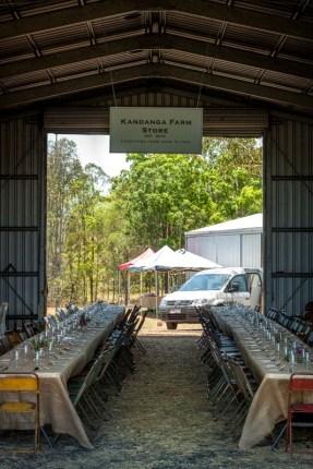 kandanga-farm-2016-8