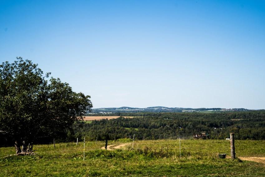 summer-2018-scenes-kandise-brown-photographer-43