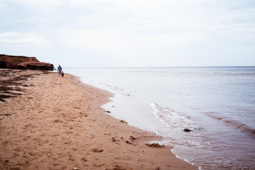 summer-2018-scenes-kandise-brown-photographer-54