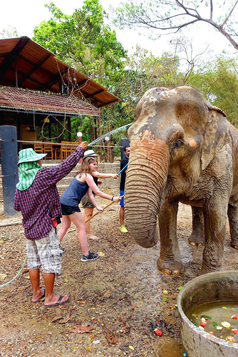 Thailand-WFFT--Pailin-Elephant-Bath-02