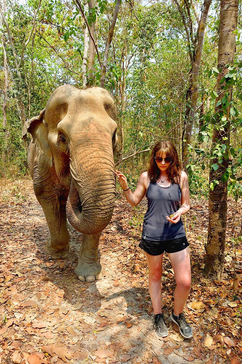 Thailand-WFFT--Pailin-Elephant-Walk-06