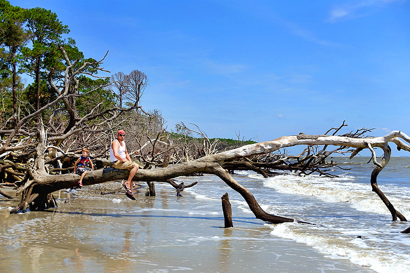 Hunting-Island-State-Park-North-Beach-03