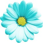 Teal Flower picture