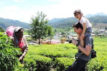 Family Tours Sri Lanka