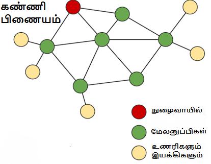 கண்ணி பிணையம்