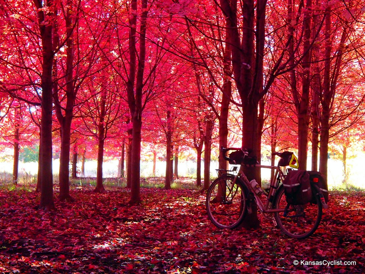 Ireland In The Fall Wallpaper Sunflower Cycling News 2013 10 23 Kansas Cyclist News