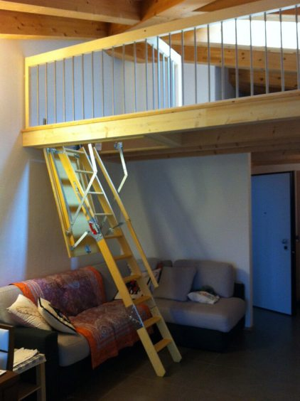 Dachtreppe Modell Ligna 3
