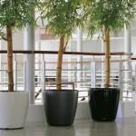 Classico-28-70-4+bamboo