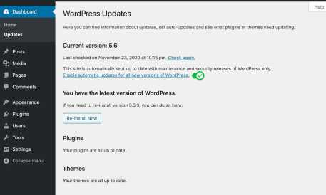 View of the WordPress Updates tab where users can opt-in to automatic version updates.