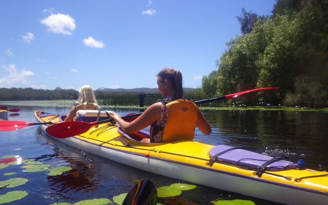 5 reasons to Kayak the Noosa Everglades & How to do it Responsibly