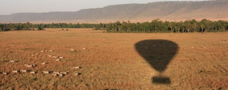 ballon safari
