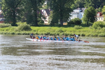 Drachenboot Pirna 2016 KVL Bild 045