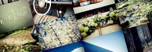 galeria-imagenes-gratis