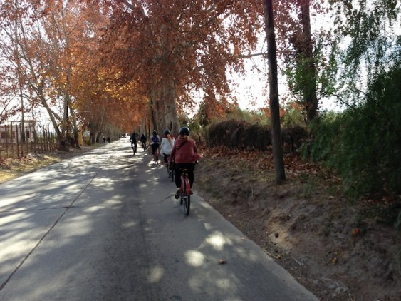 Biking to the wineries in Mendoza, Argentina - Kapcha The World