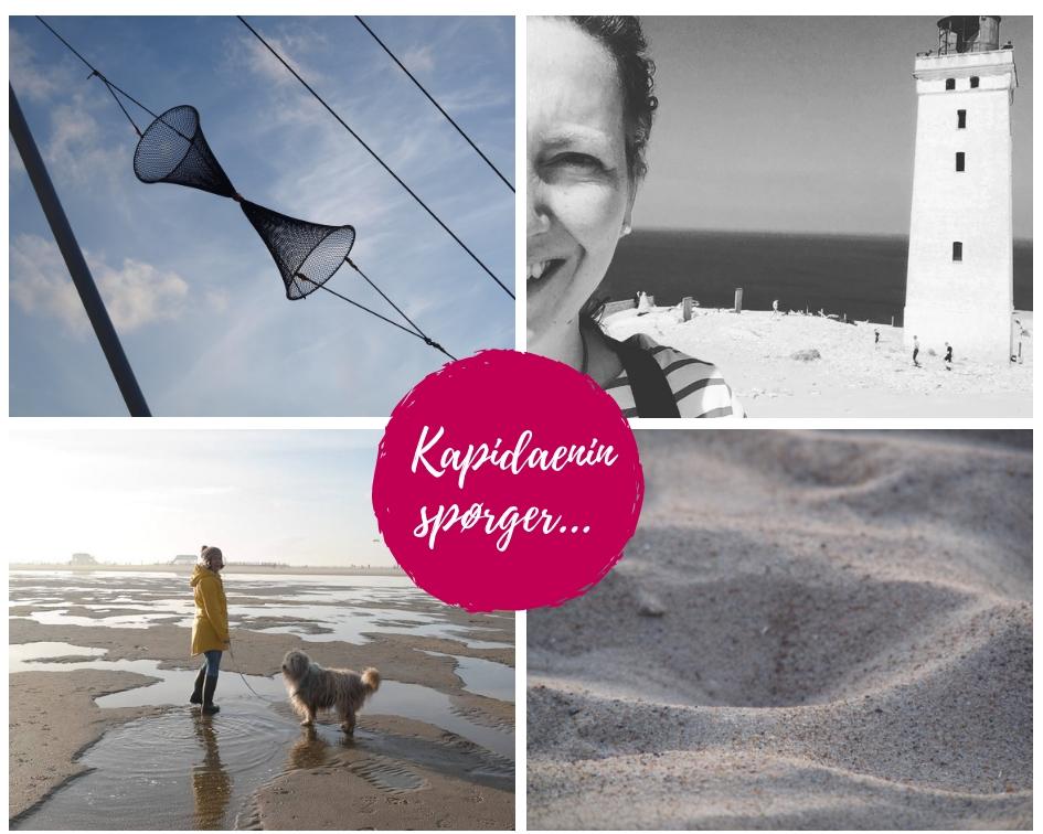 Kapidaenin spørger…Elke Weiler von Meerblog.de