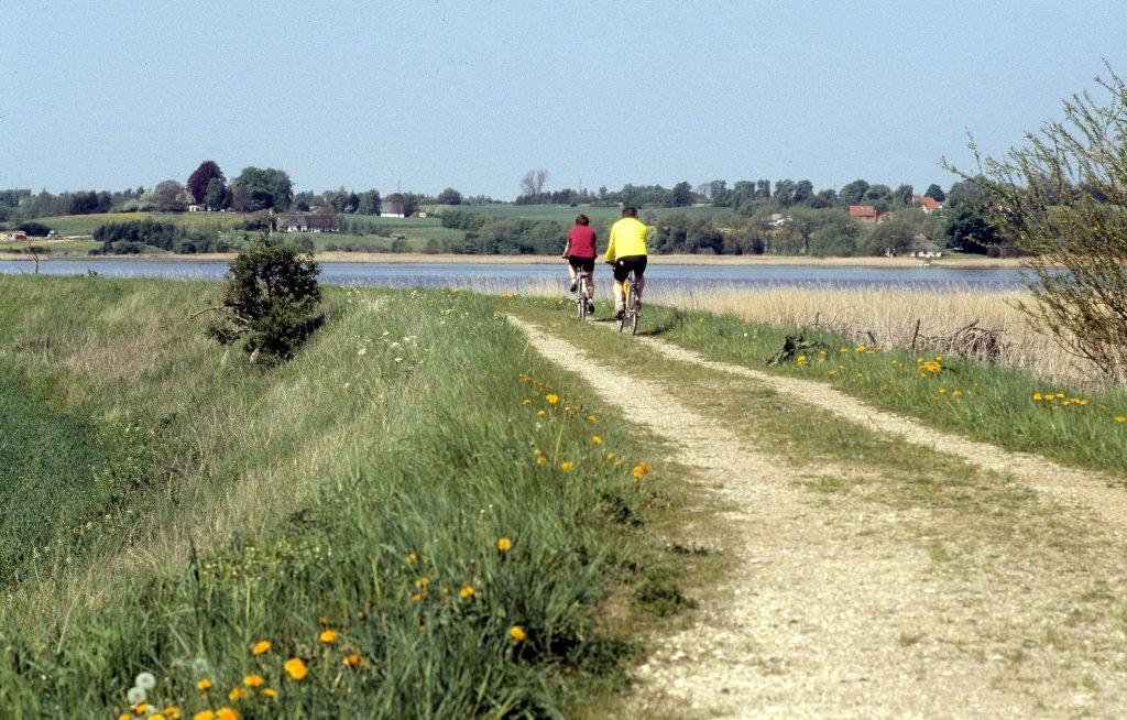 Fjordstien mellem Ordrup og Tempelkrog, cyklister, fril#1800