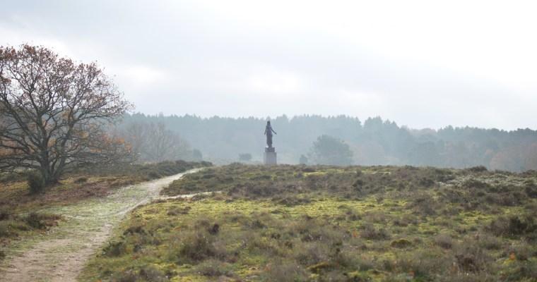 Dänemarks 5 Nationalparks: Kongernes Nordsjælland