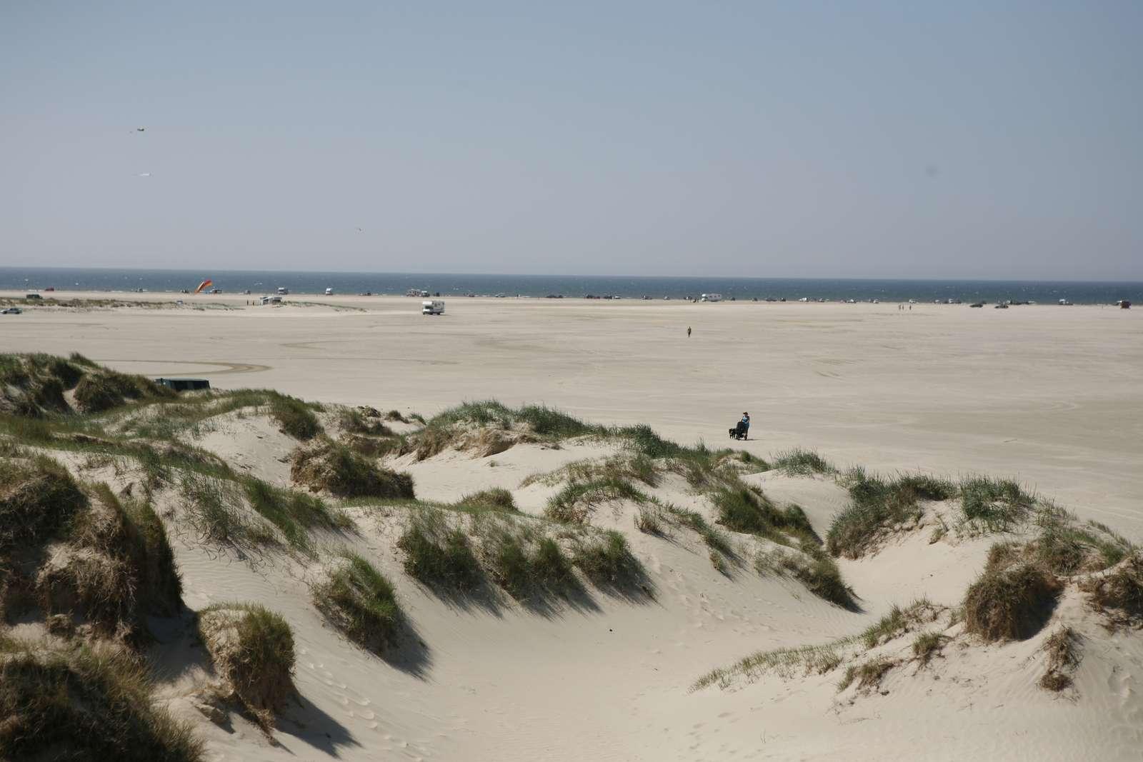 Strand scheint unendlich - Rømø (c)VisitRømøTønder