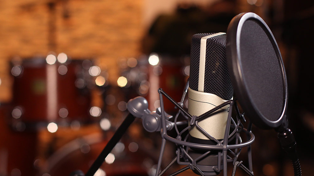 Image result for Best Microphone For Your Voice