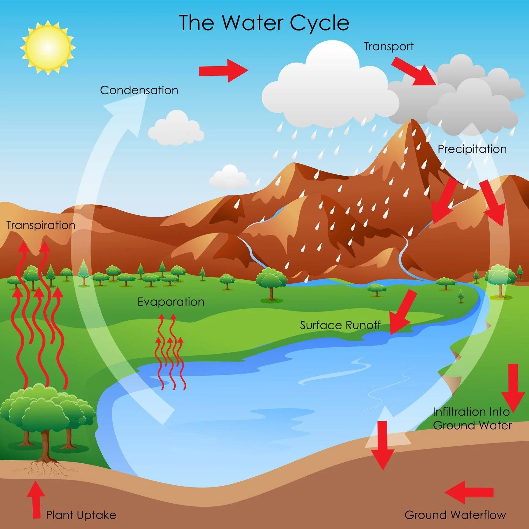 Water Cycle In French Language