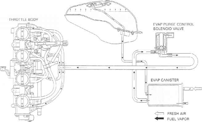 Evaporative Emission Control System California Type Only
