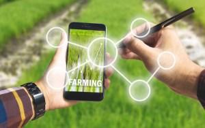 L'agricoltura digitale che decolla con SmartAgriHubs