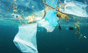 La plastica abbonda negli oceani: pronti ad utilizzare nuove soluzioni scientifiche?