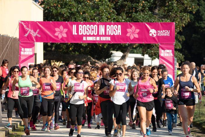A Napoli Bosco in Rosa: Corri tra i capolavori di Capodimonte