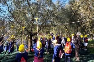 Frantoi aperti in Campania: Olio nuovo per oltre mille bambini
