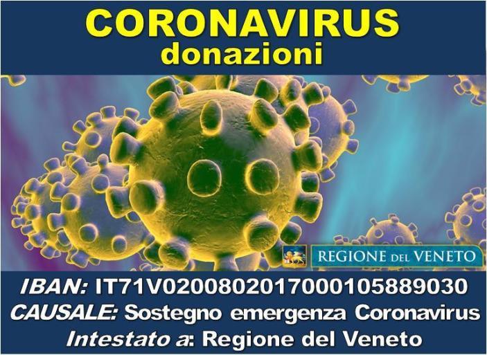 Covid19: Tante offerte di sostegno alla sanità veneta