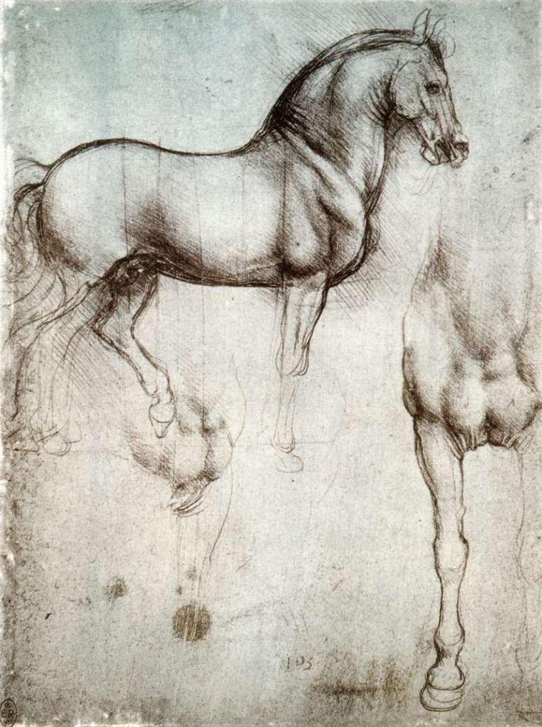 Tra le 5 curiosità su Leonardo Da Vinci una riguarda il suo essere un animalista convinto. Tra gli schizzi giunti fino a noi molti riguardano gli animali, studiati e amati da Leonardo.