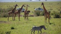 TOURISM-KENYA