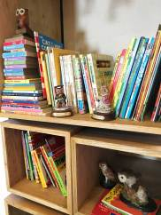 books-at-the-owls-nest-play-cafe-karachi