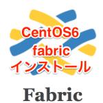 CentOS6にfabricをインストール