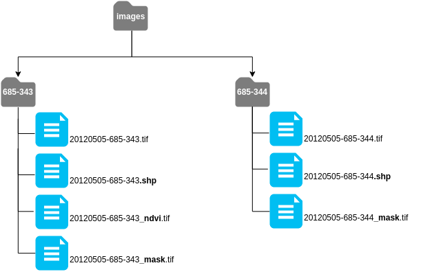 Hierarchy and naming of my files