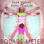 Square Meter Cover Art