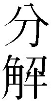 "The kanji for ""bunkai"" (""analysis"")"