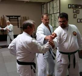 Ryan Parker teaching a kakidi drill based on Pinan Godan