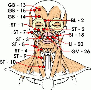 Vulnerable points in the head and neck, as labeled in traditional Chinese medicine