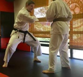 Teaching Pinan Sandan application at our Waza Weekend at Mires Martial Arts in 2017
