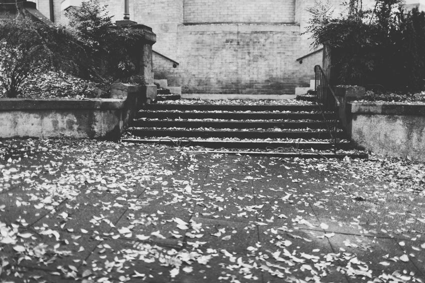 fall010