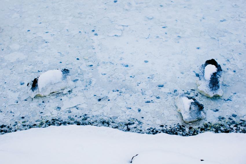 017_icelandweddingphotographer_karenobristphotography