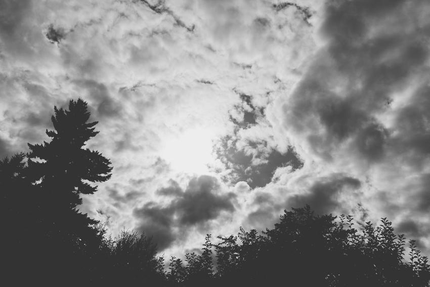 135_kitt_erin_blog