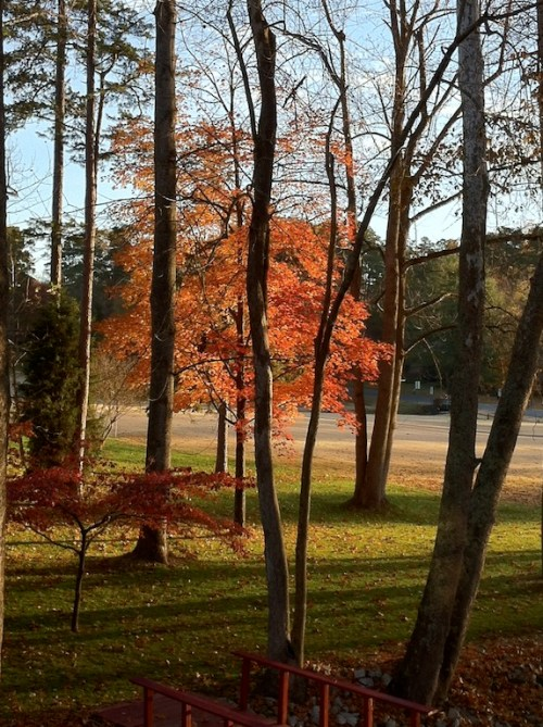 Time to Prepare Your Home for Fall Weather!
