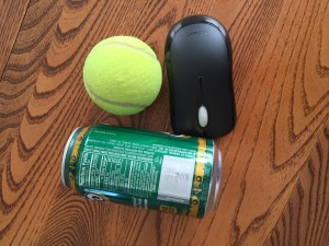 Portions: Tennis Ball, Computer Mouse, Soda Can