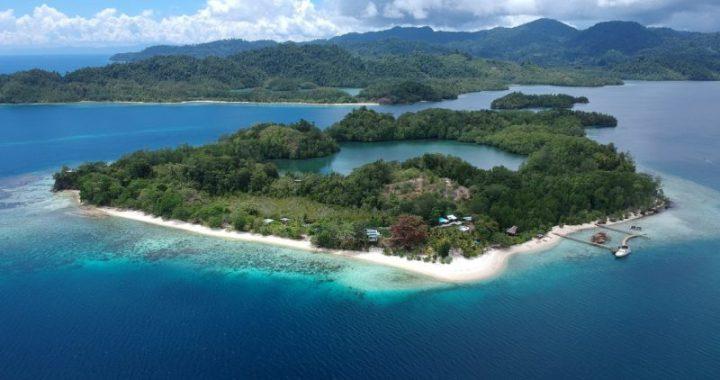 Jasa Ekspedisi ke Pulau Halmahera terbaik